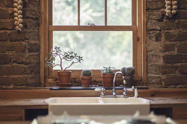 חלון, נוף, שמיים, עציץ