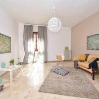 רצפה נקייה אחרי פוליש, ניקיון, סלון, שטיח