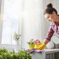 שירותי ניקיון לבתים ודירות